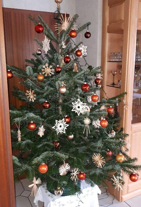 Entsorgung der Weihnachtsbäume